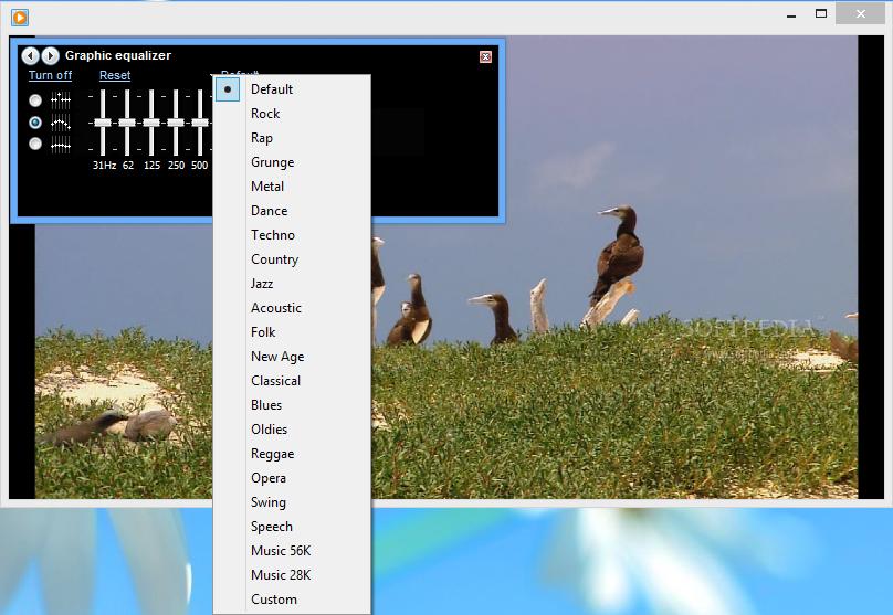 windows media player 12 flv codec