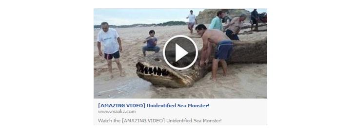 video amazing: