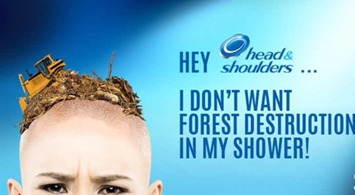 don 39 t want forest destruction in my shower greenpeace members