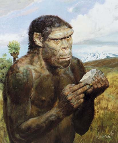 ahimsa obligation of homo sapiens sapiens If we restrict the use of homo sapiens in the fossil record to specimens which  share a significant number of derived features in the skeleton with extant h.